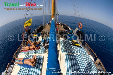 Sudan, San Marco sailboat, suntaning on upper dock DSC_1964 TIF copia copy.jpg